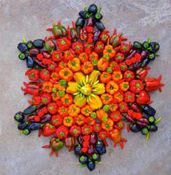 mandala-legumes-4.jpg